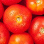 信じること~1.3万個の実をつけた奇跡のトマトと重なるオルタナティブ教育のアプローチ