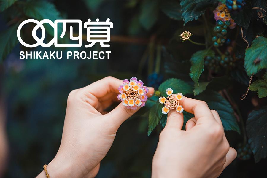 4kaku project