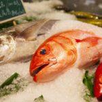 生産者と消費者がTwitterで直接つながる! 魚のオンライン直売所「UONTED」を本日より正式開始 〜生産者の登録を受け付け、魚の応援消費を促進〜